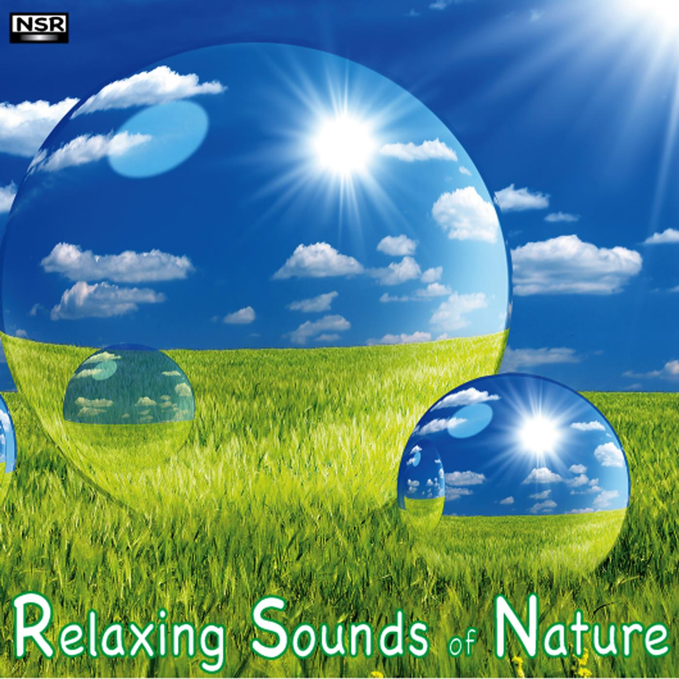 Listen Free to Relaxing Sounds Of Nature - Ocean Waves