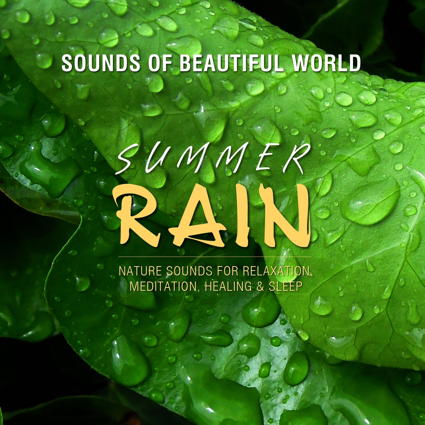 Listen Free to Sounds of Beautiful World - Summer Rain