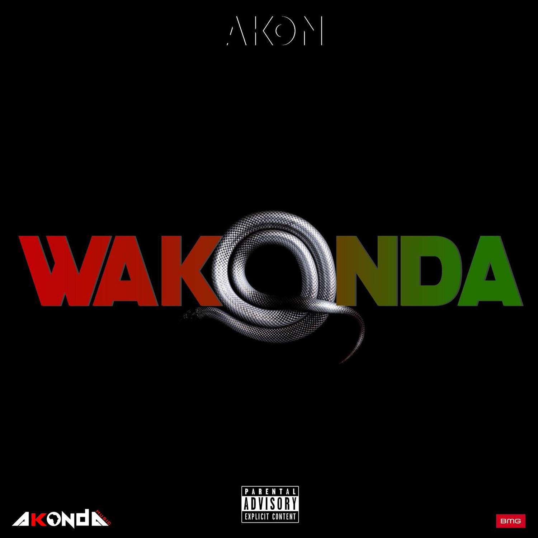 Akon Radio: Listen to Free Music & Get The Latest Info | iHeartRadio