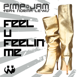 Feel U Feelin' Me (Hustler DJs Radio Edit)