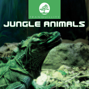 Jungle Animals Part 2 - Original