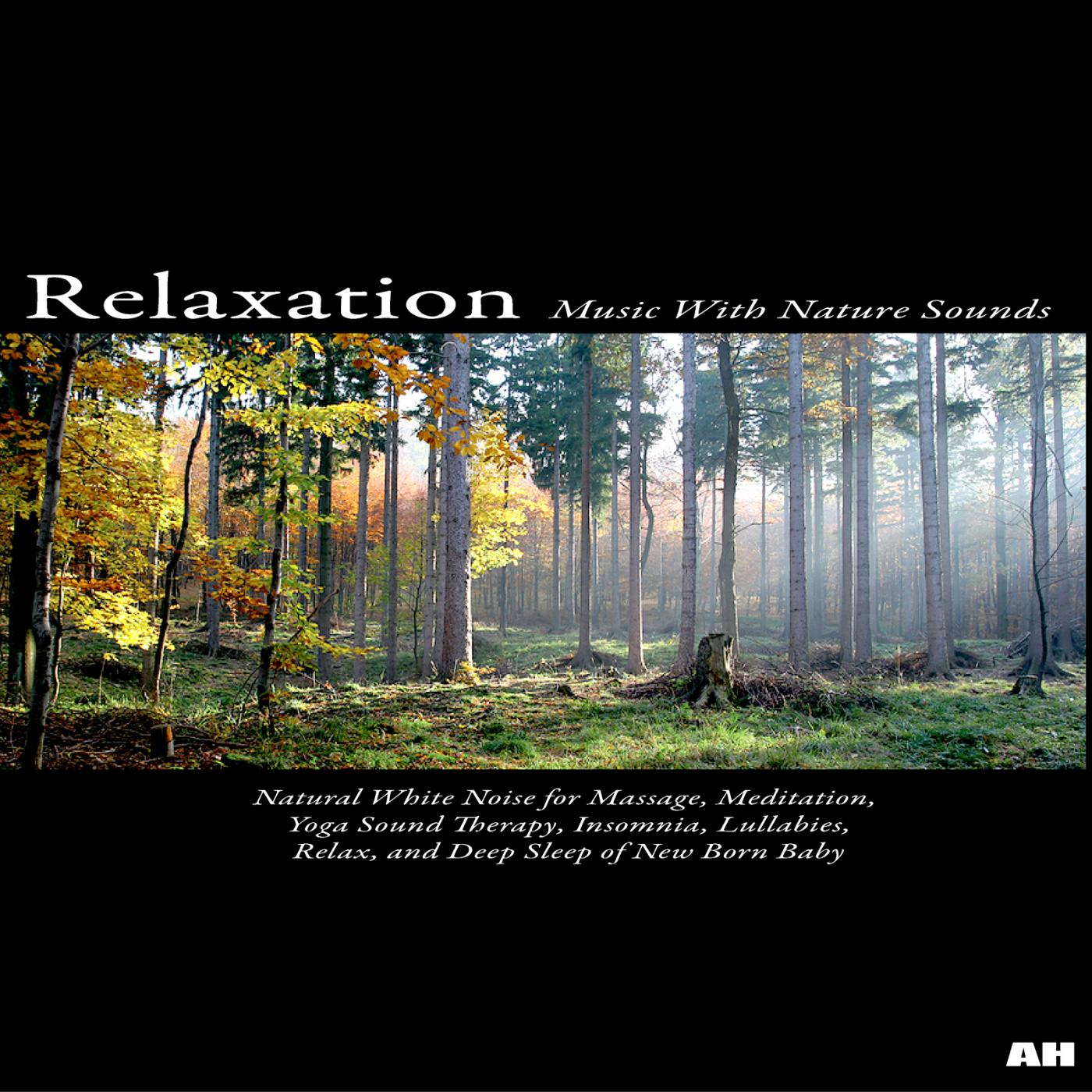 Free Nature Sounds Download Relaxation