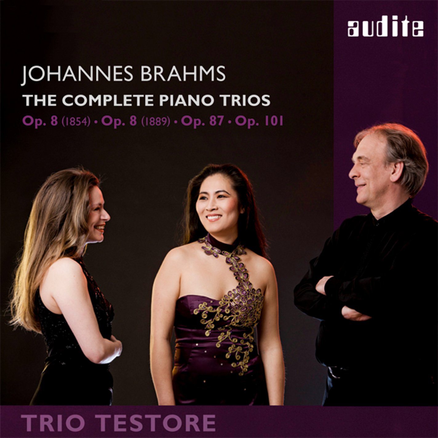 Piano Trio No. 1 in B Major, Op. 8 (1889 Version), Piano Trio No. 1 in B Major, Op. 8 (1889 Version): I. Allegro con brio